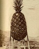 菠萝状的自来水塔