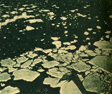 南极海边冰块溶解的景象