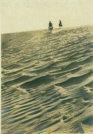 内蒙古沙丘
