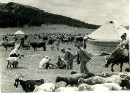 北疆草原牧民