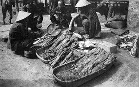 东北、华北的烟农们出售未经加工的烟叶